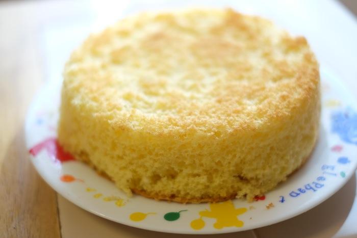 PROVIA-Camera-cake