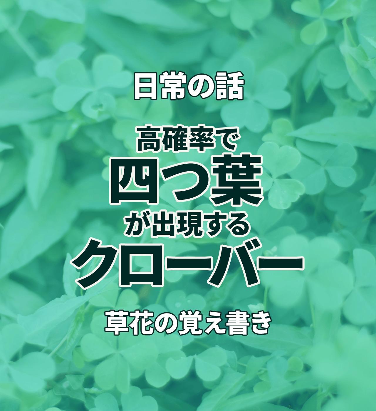 高確率で四つ葉が出現するクローバーの種の話