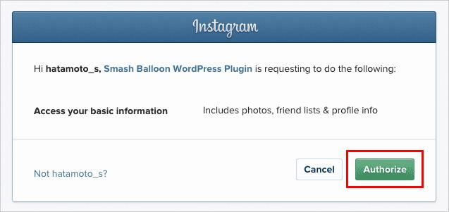 Authorization Request Instagram