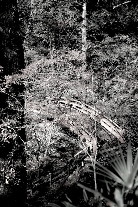 紙屋川に架かる鶯橋|北野天満宮|京都紅葉