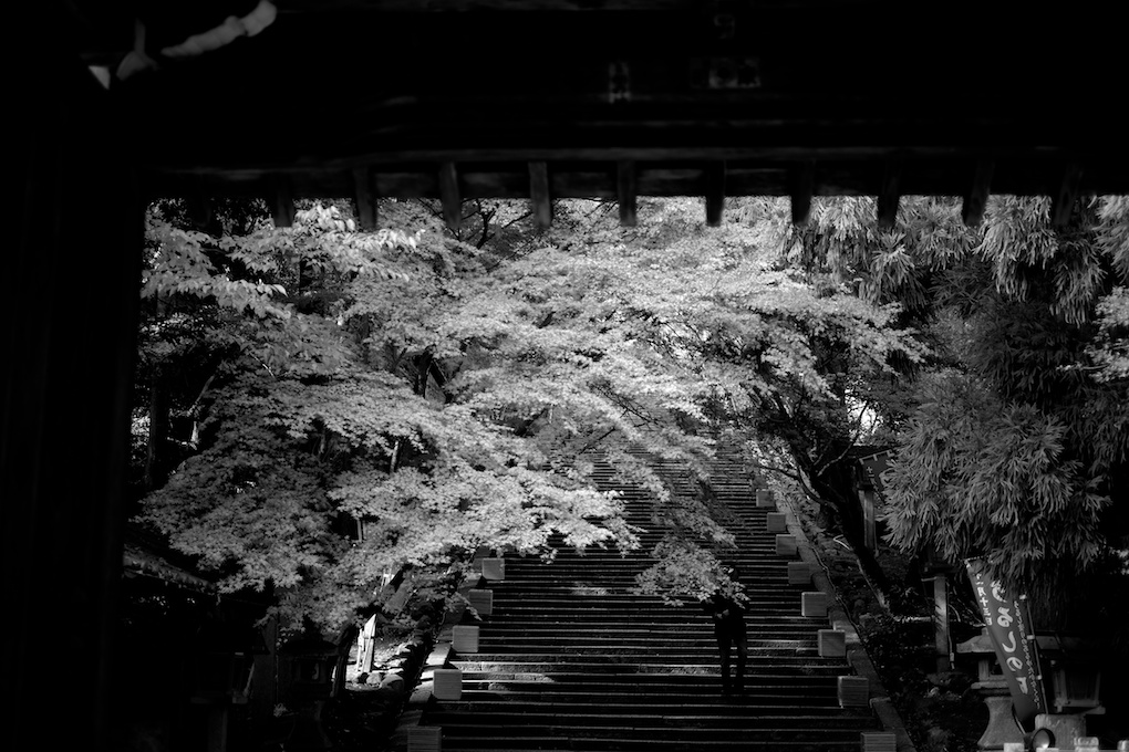 京都 嵐山 法輪寺正面階段