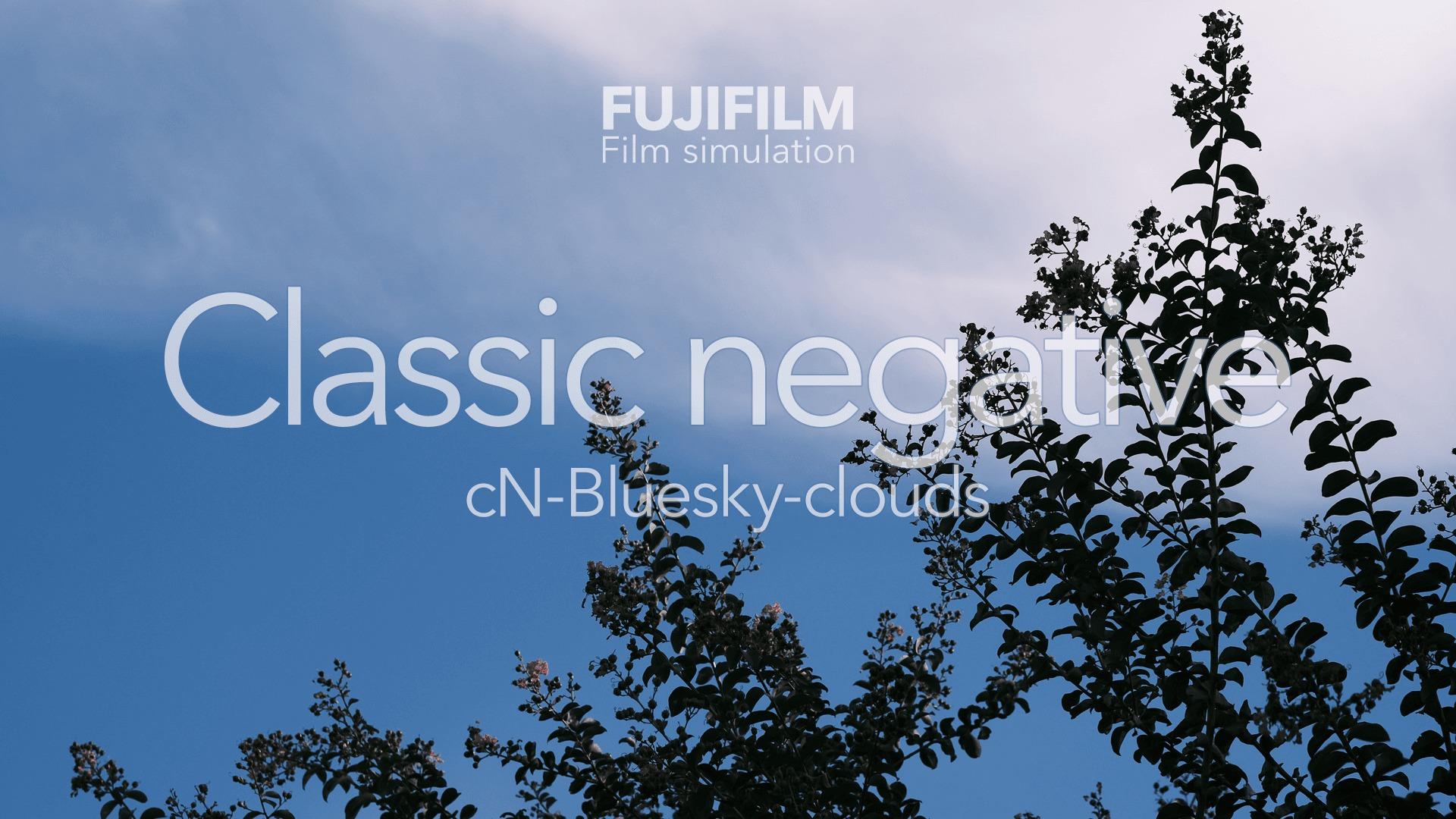 秋の夕暮れの空を表情豊かに映し出すクラシックネガ カスタム cN-Bluesky-clouds で草花写真