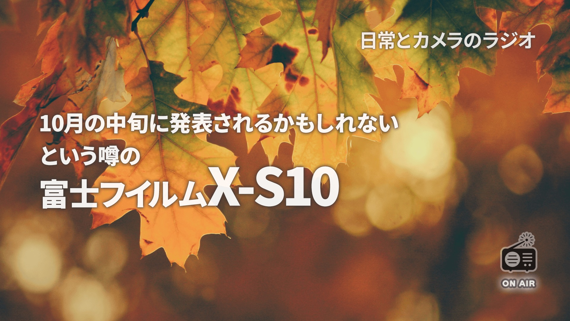 富士フイルム X-S10